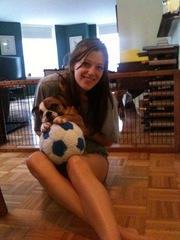 Adorable english bulldog puppies for sale!
